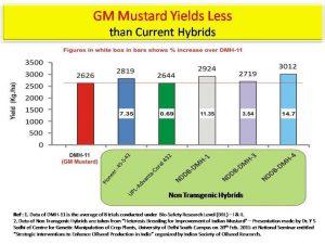 gm-mustard-data