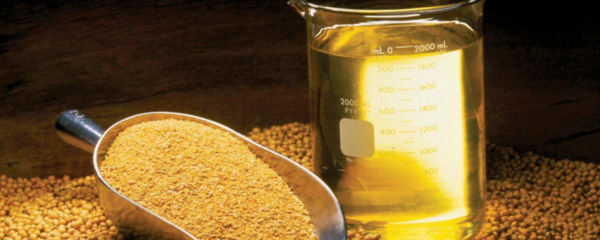 soybean_oil_meal_beans_0