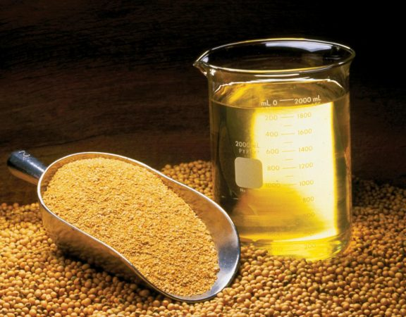 soybean_oil_meal_beans_0