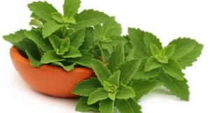 health-benefits-of-stevia