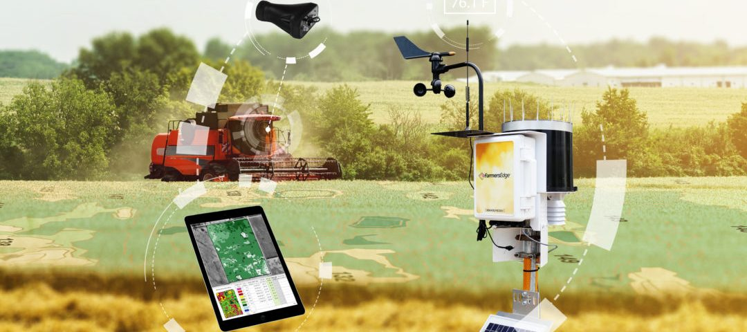 AI in agriculture is just getting started in India | Agri Nation